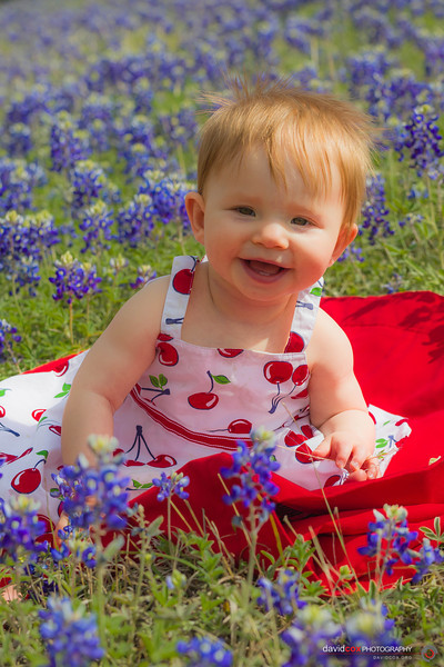 Madeline in Bluebonnets